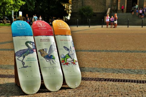 Skate desky ELEMENT